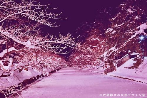 桜で有名な弘前公園。今回の帰省中は雪が少なかったです。